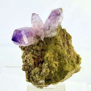 Amethyst, Kristallstufe auf Muttergestein,