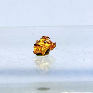 Gold Nugget Bolivien