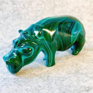 Nilpferd, Hippo, Malachit, Kongo